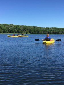 Woodsy Women Kayak Paddle