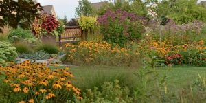 Learn and Grow With Us Garden Tour