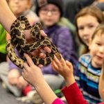 Snake, Rattle and Roll with Snake Discovery