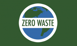 New Year's Resolutions for the Low -Waste Living