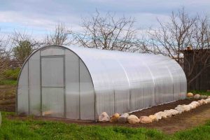 Extend Growing Season with a Hoop House