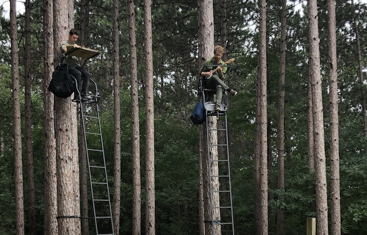 Music in the Trees 2-Day Festival