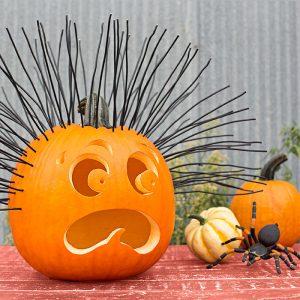 Happy Howl-ooooooween! First Annual Pumpkin Decora...