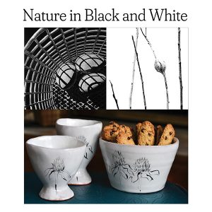 Nature in Black and White: Opening Reception