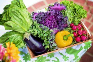 Intro to Gardening