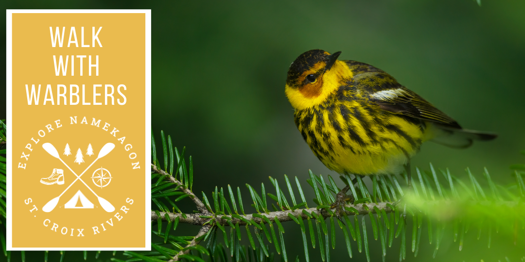 Walk with Warblers Hike