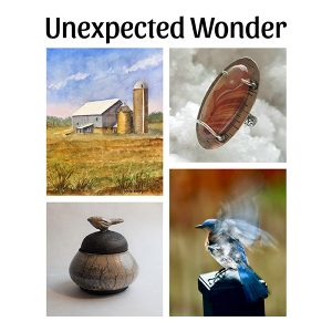 Unexpected Wonder Opening Reception